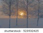 Winter Sunrise Seen Through Th...