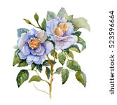 watercolor painting of two... | Shutterstock . vector #523596664