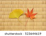 maple and ginkgo leaves on... | Shutterstock . vector #523644619