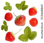 set of ripe strawberries with... | Shutterstock . vector #523668865