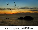 seagulls flying over the... | Shutterstock . vector #52368067