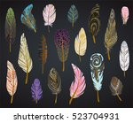 colorful detailed bird feathers ... | Shutterstock .eps vector #523704931