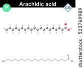 arachidic fatty acid atomic...   Shutterstock .eps vector #523769989