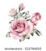 Stock photo watercolor flowers floral illustration in pastel colors pink rose branch of flowers isolated on 523784035