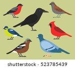 set of flat birds  isolated on... | Shutterstock .eps vector #523785439