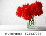 Beautiful Red Dahlia Flowers I...