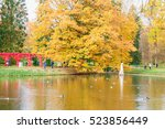 lomonosov  saint petersburg ... | Shutterstock . vector #523856449