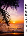 sunset landscape. beach sunset. ... | Shutterstock . vector #523927759