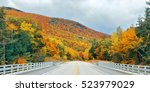 Highway And Autumn Foliage...