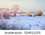 Winter Field Landscape With Th...