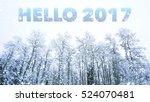 hello 2017 words on winter...   Shutterstock . vector #524070481