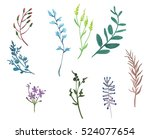 colorful floral collection... | Shutterstock . vector #524077654