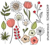 Flower graphic design. Vector set of floral elements with hand drawn flowers.