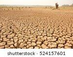 global warming concept. dead... | Shutterstock . vector #524157601