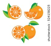 collection of different oranges ... | Shutterstock .eps vector #524158225