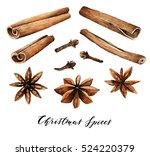 watercolor elements. christmas... | Shutterstock . vector #524220379