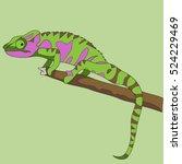lizard exotic reptile chameleon ... | Shutterstock .eps vector #524229469