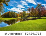 golf club on the road  french... | Shutterstock . vector #524241715