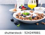 homemade chocolate granola or... | Shutterstock . vector #524249881