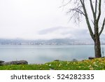 rainy day on the lake in autumn | Shutterstock . vector #524282335