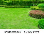 green lawn  the front lawn for... | Shutterstock . vector #524291995