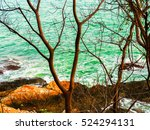Beach Of Sand And Rocks With...