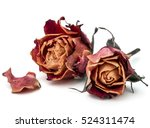Stock photo dried rose flower head isolated on white background cutout 524311474