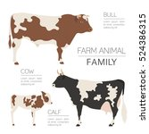 Cattle Farm Infographic...