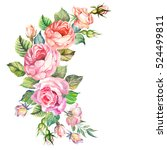 vintage.watercolor roses.hand... | Shutterstock . vector #524499811