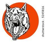 growling wolf   Shutterstock . vector #5245816