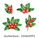 holly berry brunches. christmas ... | Shutterstock . vector #524643991