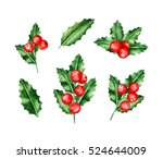 holly berry brunches. christmas ... | Shutterstock . vector #524644009