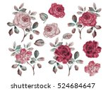 Stock photo vintage roses set watercolor illustration design elements for cards invitations and textile 524684647