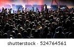 hardcore concert | Shutterstock . vector #524764561