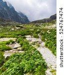 mountains   tatra mountains ... | Shutterstock . vector #524767474