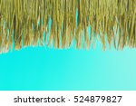 Grass Roofs  Thatched With Blu...