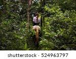 girl horseback riding in the... | Shutterstock . vector #524963797