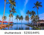pool surrounded by palm trees... | Shutterstock . vector #525014491