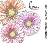 three bright gerbera for pet on ...
