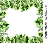 frame with tropical leaves | Shutterstock .eps vector #525062041