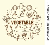vegetable minimal thin line... | Shutterstock .eps vector #525075577