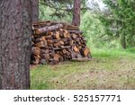 pile of firewood. preparation... | Shutterstock . vector #525157771
