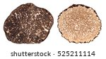 winter and summer black truffle ... | Shutterstock . vector #525211114