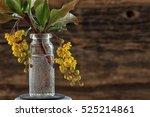 Macro Yellow Flower Barberry I...