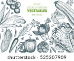 vegetables top view frame with... | Shutterstock .eps vector #525307909