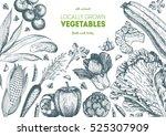 vegetables top view frame.... | Shutterstock .eps vector #525307909