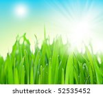 field of grass and perfect blue ... | Shutterstock . vector #52535452