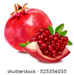 pomegranate isolated on white... | Shutterstock . vector #525356035