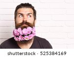 handsome bearded man with... | Shutterstock . vector #525384169