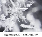 real snowflake | Shutterstock . vector #525398329